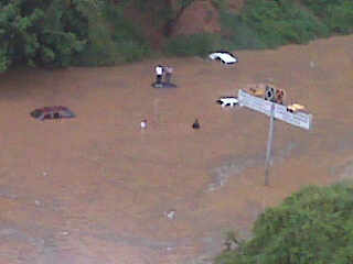 Autopista de Pdos a la altura de Campitos